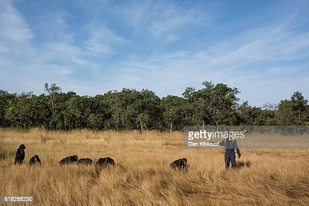 Keeper Sekou Kourouma takes the nursery group through Savanah during a bushwalk at the Chimpanzee Conservation Centre on December 01 2015 in Somoria...