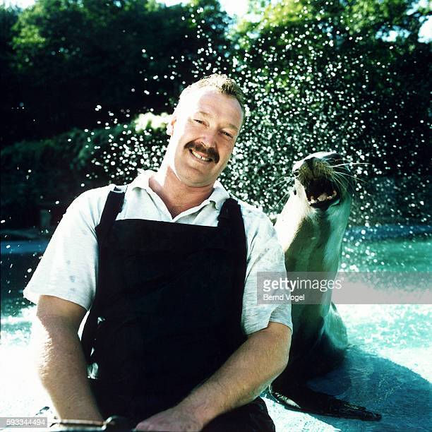 keeper with sea lion - zoo keeper stock pictures, royalty-free photos & images