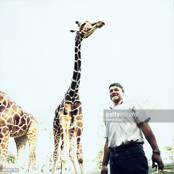 keeper with two giraffes - zoo keeper stock pictures, royalty-free photos & images