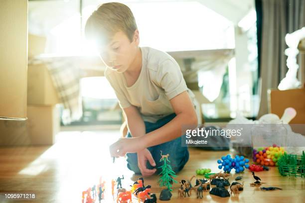 keeping busy with his toys - toy animal stock photos and pictures