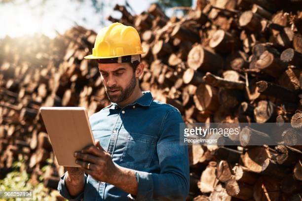 Keeping his eye on the lumber shipments