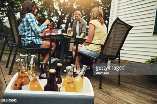 keeping the cold ones cold - esky stock photos and pictures
