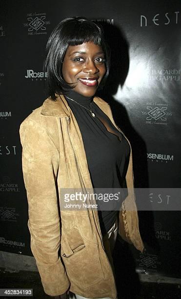 Keisha Combs during Enyce 10Year Anniversary Gala at Next in New York