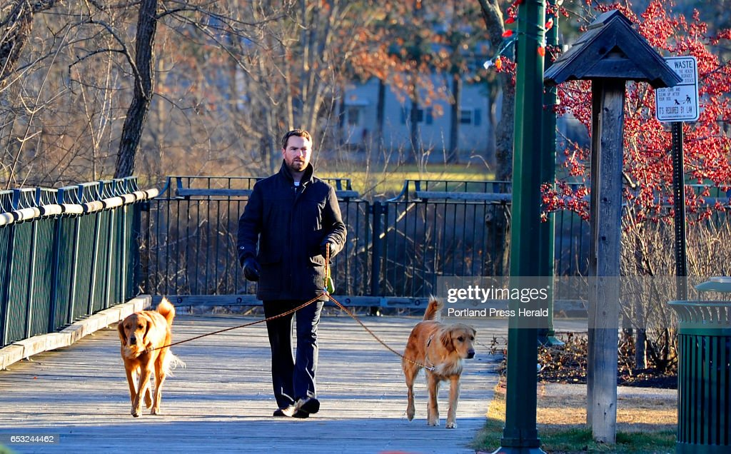 Keith Denecker of Westbrook enjoys a stroll along River Walk in Westbrook with his two Goldens, Apollo and Monty, something he does every morning. But this morning it was very cold, according to Denecker.