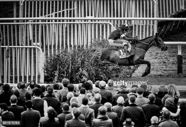 Keith Donoghue riding Tiger Roll clear the last to win The Glenfarclas Steeple Chase at Cheltenham racecourse on Ladies Day on March 14 2018 in...