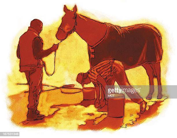 Keith Simmons color illustration of a racehorse being washed groomed