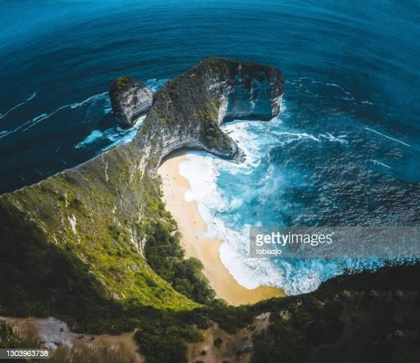 kelingking beach on nusa penida island, bali - nusa penida stock pictures, royalty-free photos & images