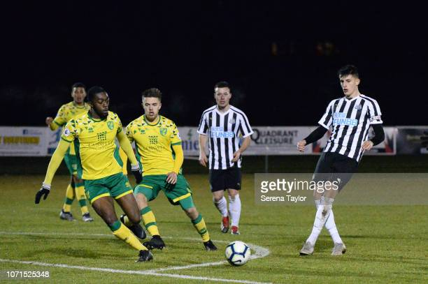 Kelland Watts of Newcastle United passes the ball during the Premier League 2 Match between Newcastle United and Norwich City at Whitley Park on...
