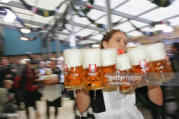 Kellnerin Schleppt Bierkrüge Beim Oktoberfest In München 180905 Tragen Viele Bierseidel
