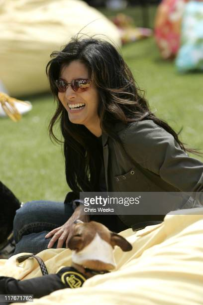 Kelly Hu during Silver Spoon Hollywood Buffet for Dogs and Babies - Day 2 in Los Angeles, California, United States.