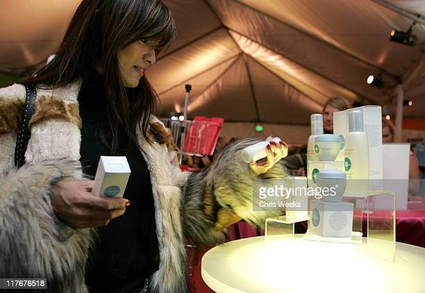 Kelly Hu during Silver Spoon PreGolden Globe Hollywood Buffet Day 1 at Private Residence in Los Angeles California United States Photo by Chris...