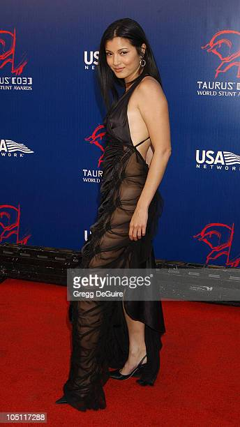 Kelly Hu during The 3rd Annual World Stunt Awards Arrivals at Paramount Studios in Los Angeles California United States