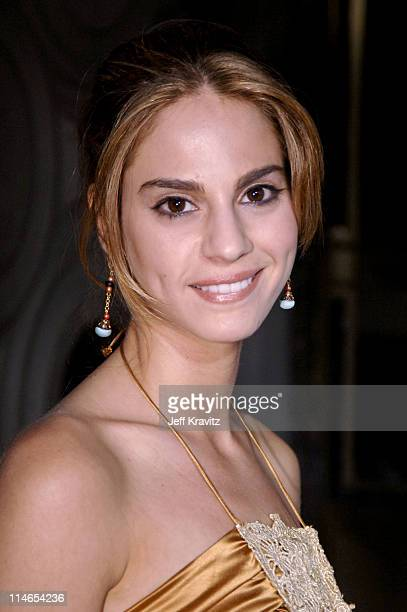 Kelly Kruger during Entourage Season Two Los Angeles Premiere Arrivals at El Capitan Theater in Hollywood California United States
