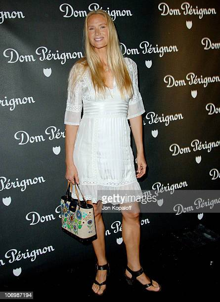 Kelly Lynch during Dom Perignon and Karl Lagerfeld International Launch Event Arrivals at Private Residence in Beverly Hills California United States
