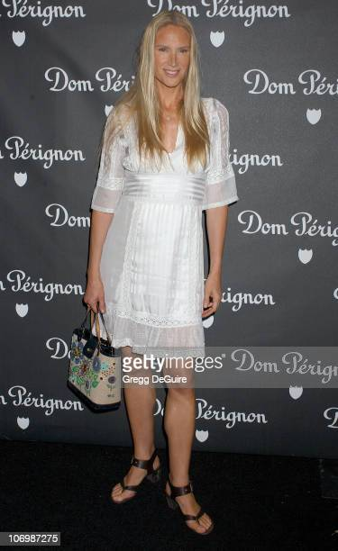 Kelly Lynch during Dom Perignon Karl Lagerfeld and Eva Herzigova Host An International Launch To Unveil The New Image Of Dom Perignon Rose Vintage...