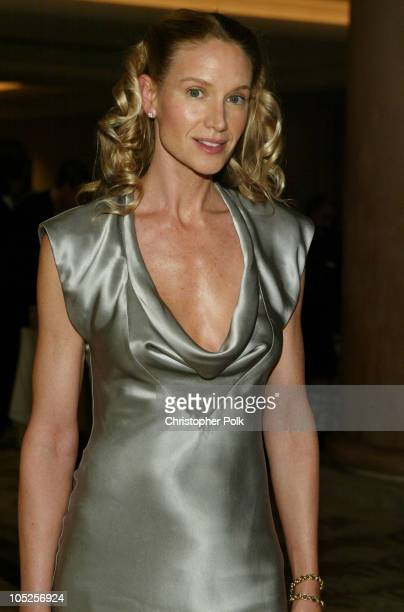 Kelly Lynch during Los Angeles Film Critics Association Annual Awards Ceremony at St Regis Hotel in Century City CA United States
