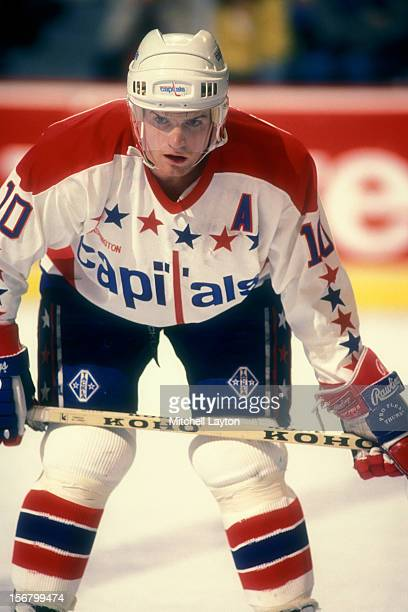 Kelly Miller of the Washington Capitals looks on during a hockey game against the Toronto Maple Leafs on November 21 1990 at the Capital Centre in...