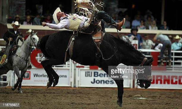 Kelly Timberman competes in the bareback riding competition at the Calgary Stampede on July 10 2011 in Calgary Canada The tenday event featuring over...