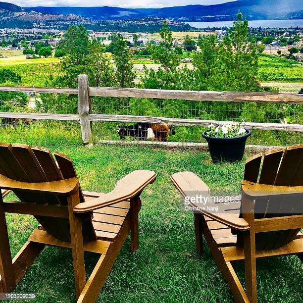 kelowna with a view-off the grid organic winery - kelowna stock pictures, royalty-free photos & images
