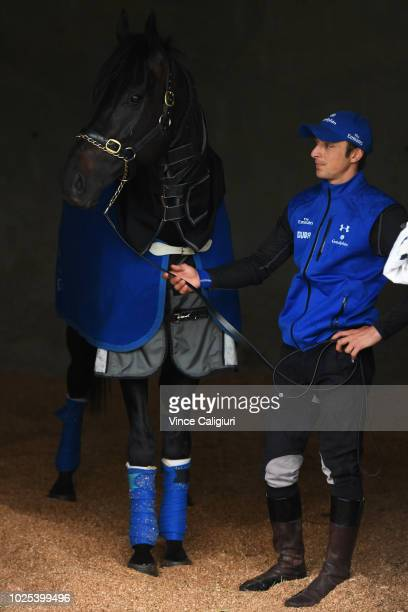 Kementari parades for the media with strapper Alex Lemarie ahead of SaturdayÕs $1 million New Zealand Bloodstock Memsie Stakes during a media...