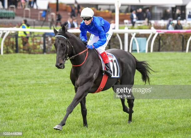 Kementari ridden by Craig Williams heads to the barrier before the PFD Food Services Makybe Diva Stakes at Flemington Racecourse on September 15 2018...
