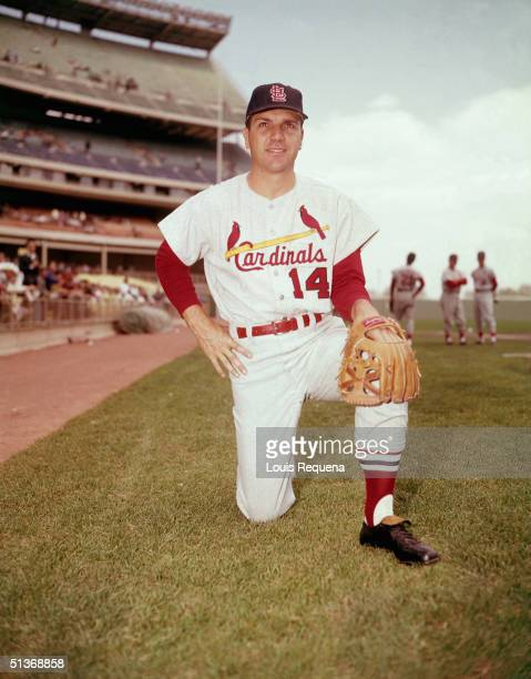 Ken Boyer of the St Louis Cardinals poses for a portrait Ken Boye played for the St Louis Cardinals from 19551965