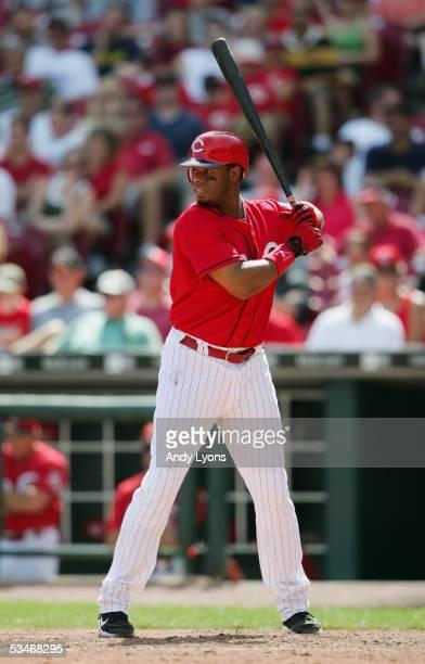 Ken Griffey Jr. #30 of the Cincinnati Reds at bat against the Arizona Diamondbacks during the MLB game on August 21, 2005 at Great American Ballpark...