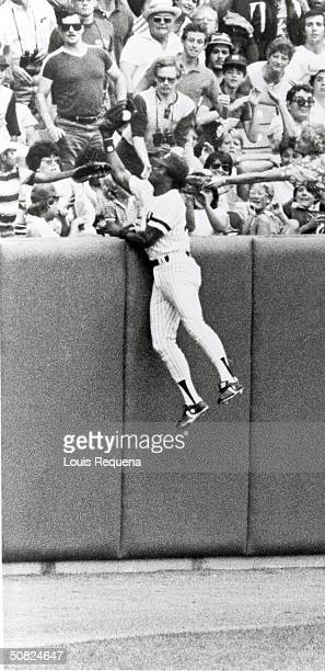 Ken Griffey of the New York Yankees leaps over the top of the backfield fence to catch the ball during a game at Yankee Stadium in the Bronx New York...