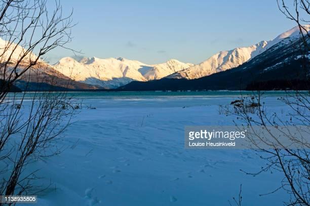 kenai lake, primrose, kenai peninsula, alaska - kenai mountains stock pictures, royalty-free photos & images