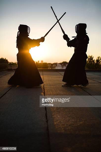 Kendo エクササイズ