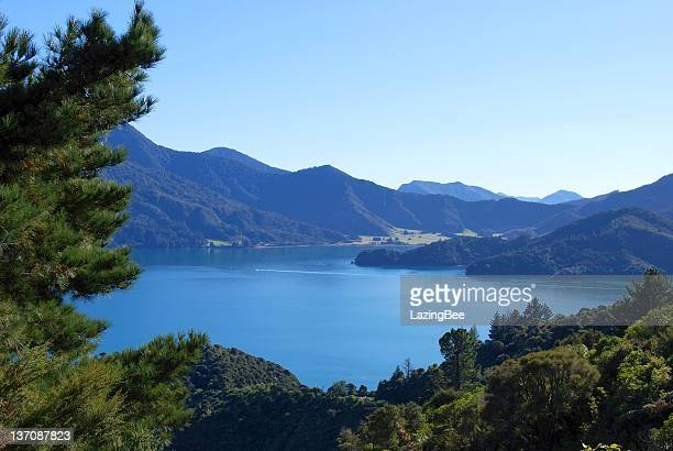 Kenepuru Sound, Marlborough, NZ