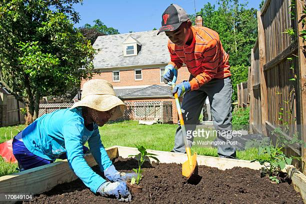 Kennedy Harrison and her brother Anthony plant a garden in their backyard in Washington, DC, on June 15, 2013. The Harrison's received one of 50...