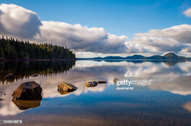kennedy lake bc - vancouver island stock pictures, royalty-free photos & images