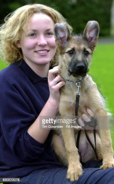Kennel assistant Alison Walsh with Rian a 13 week old German shepherd/Briardcross at the RSPCA Millbrook Animal Centre at Chobham Rian is another...