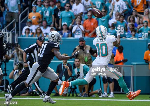 Kenny Stills of the Miami Dolphins makes the catch for a touchdown during the second quarter against the Oakland Raiders at Hard Rock Stadium on...