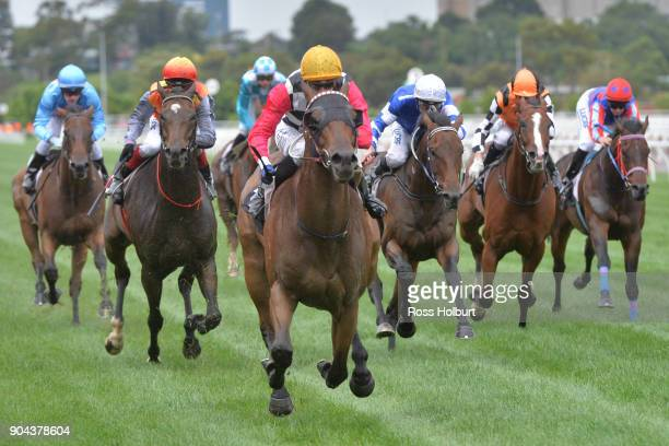 Ken's Dream ridden by Ben Allen wins the Better Beyond Plate at Flemington Racecourse on January 13 2018 in Flemington Australia