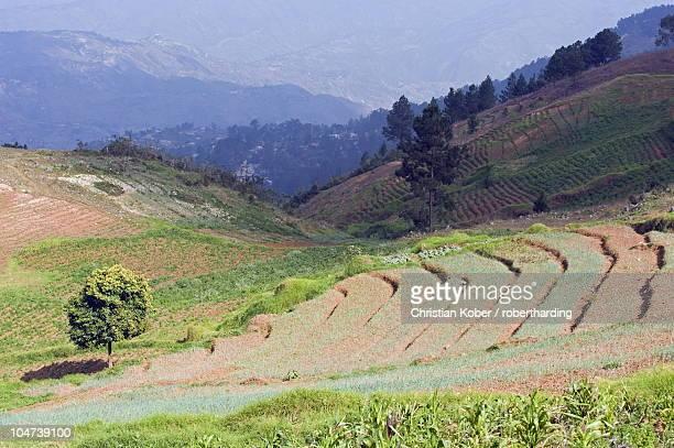 kenscoff mountains near port au prince, haiti, west indies, caribbean, central america - paisajes de haiti fotografías e imágenes de stock