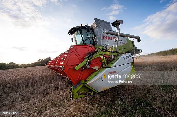 UK Kent combine harvester at work at sunset in field of wheat using latest computerised technology and GPRS to establish and improve yield per acre...