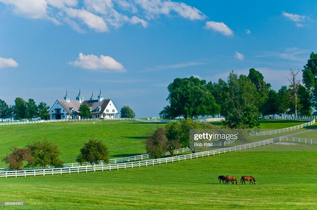 bluegrass #kentucky #countryside #green #white #picket #fence ...