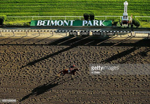 where is belmont race track