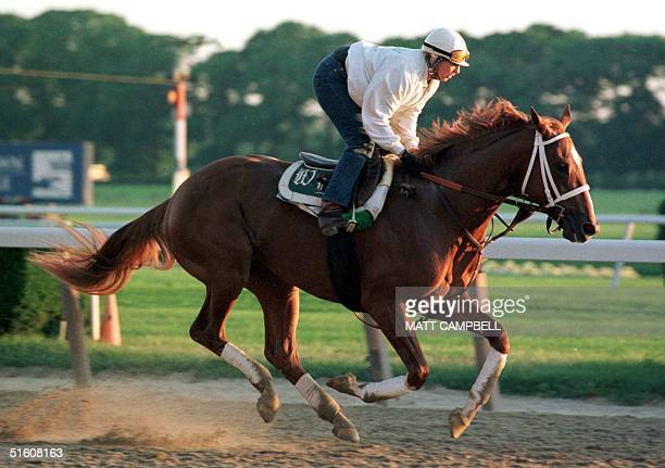 Kentucky Derby and Preakness winner Charismatic is taken for a morning run by exercise rider Joanne McNamara 04 June at Belmont Race Track in Elmont...