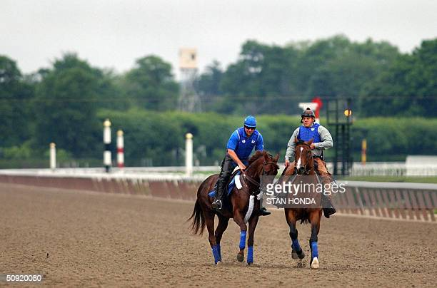 Kentucky Derby and Preakness winner Smarty Jones ridden by Peter van Trump is taken for an early morning workout with trainer John Servis riding...