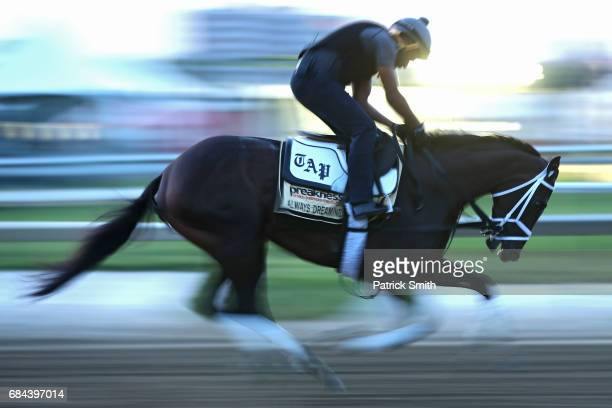 Kentucky Derby winner Always Dreaming trains on track during a training session for the upcoming Preakness Stakes at Pimlico Race Course on May 18...