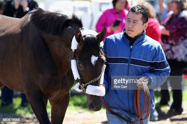 Kentucky Derby winner Always Dreaming walks off the van after arriving at Pimlico Race Course for the upcoming Preakness Stakes on May 9 2017 in...