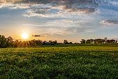 Kentucky horse farm landscape
