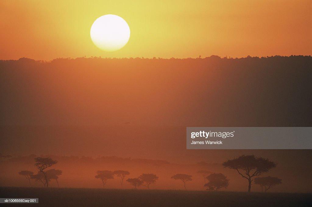Kenya and james dating