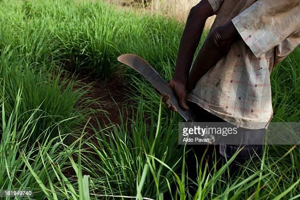kenya, meru, farmer with machete - meru filme stock-fotos und bilder