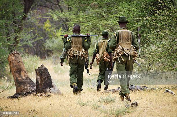 Kenya Wildlife Service's antipoaching squad perform a patrol in serach of poachers and displaced elephants through the Kora National Park on January...