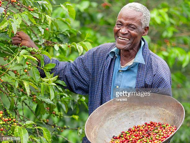 Kenyan Fair Trade Coffee Farmer