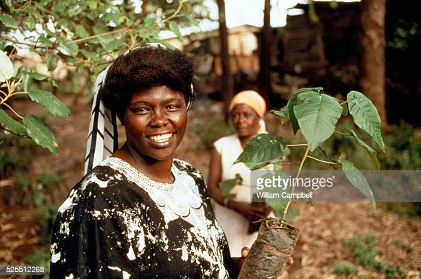 Kenyan professor Wangari Maathai leader and creator of the Green Belt Movement a grassroots nongovernmental organization established in 1977 and...
